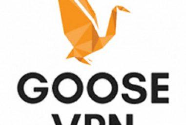 Avis Goose VPN : test complet à lire avant d'acheter ce VPN